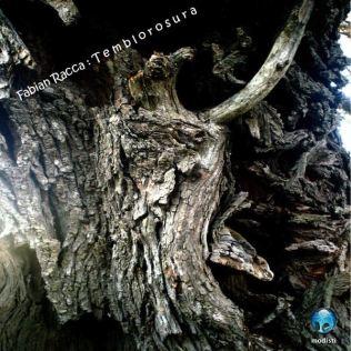 Temblorosura (by Fabián Racca) (label: Modisti)