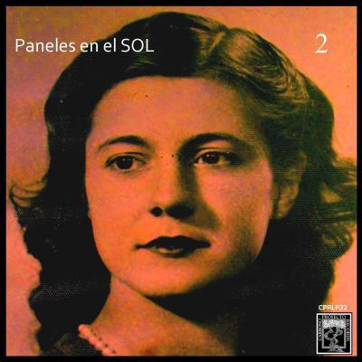 Paneles en el SOL 2 (por Daniel Sulmaiter)